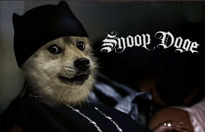 Dogecoin Smokes Its All-Time High After Snoop Dogg Becomes Snoop DOGE