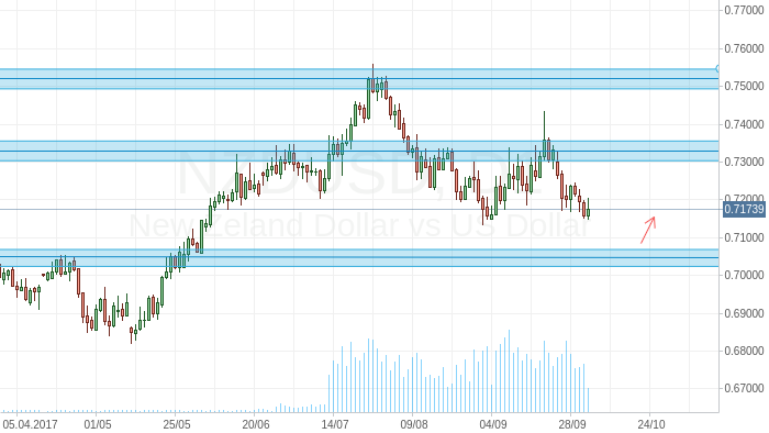 NZD/USD Long term