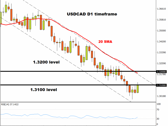 USD/CAD rebounds above 1.3100