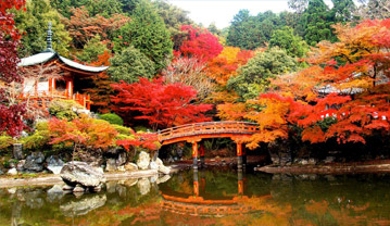 Autumnal Equinox Day in Japan in 2020