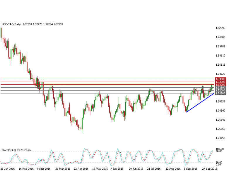 usdcad-d1-